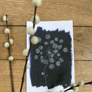 carte postale fleur d'artifice 10x15